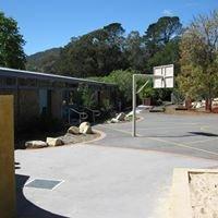Blue Gum Community School
