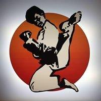 Traditional Taekwondo Greenville