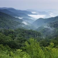 Smokey Mountains North Carolina !