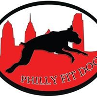 Philly Fit Dog