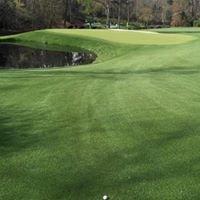 Grey Goose Lounge Rbc Heritage Golf Tournament