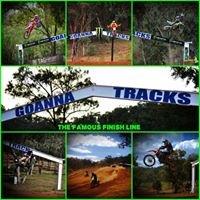 Goanna Tracks MX