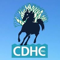 Currumbin District Horse Club Inc.