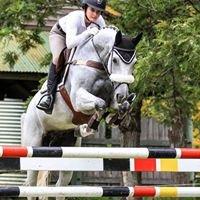 Nyala Performance Horses