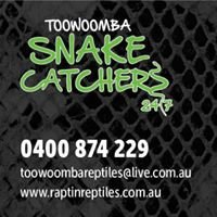 Toowoomba Snake Catchers 24/7