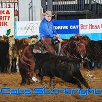 Sanders Cowhorses