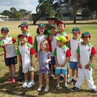 South Sydney Mount Carmel Junior Cricket Club