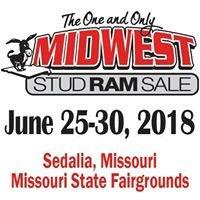 Midwest Stud Ram Sale