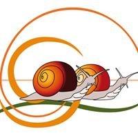 Les Escargots de l'Odon