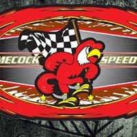 Gamecock Speedway