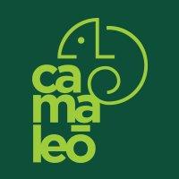 Camaleó Creative
