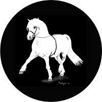 Welsh Pony & Cob Society of Canada