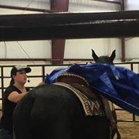 A & D Performance Horses