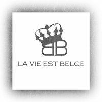 La Vie est Belge Mons