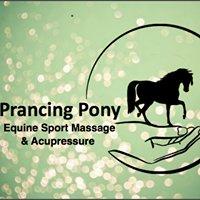 Prancing Pony Equine Sport Massage and Acupressure