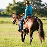Slash W Barrel Horses - Training, Bits, & Tack