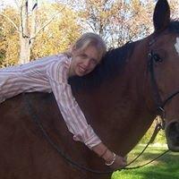 Emily Eckstrom Equine Foundation