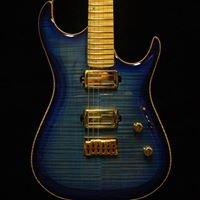 Zion Guitar Technology