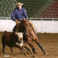 Steffen Performance Horses