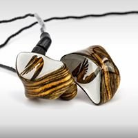 Fonique custom in-ears