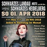 Schwarzes Heidelberg