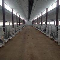Grotegut Dairy Farm Inc