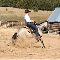 Tyrel Licking Horse Training