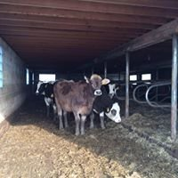 Schleis Farms LLC