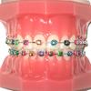 Echano Dental thumb