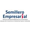 Semillero Empresarial Cámara de Comercio e Industria France Colombia