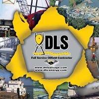 DLS, LLC