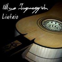 Inguaggiato Liuteria.com (costruzione di strumenti musicali)