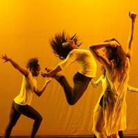 University of Memphis Dance Alliance