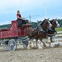 Essa Canadian National Draft Horse Exhibition
