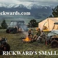 Rickward's Polaris & Small Motors