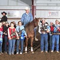Katona Reining & Perfomance Horses