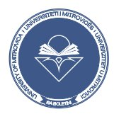 Universiteti i Mitrovicës