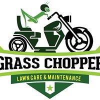Grass Chopper Organic Lawn Care