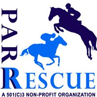 PA Racehorse Rehoming