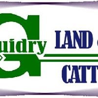 Guidry Land and Cattle, Inc.
