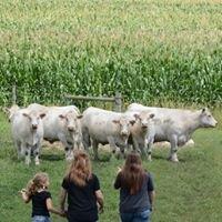 Polzin Cattle/Polzin Embryo Center