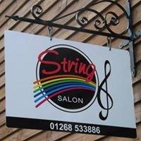 Rainbow Music & The String Salon