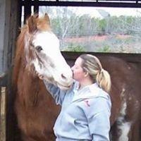 Haven Hills Equestrian Center
