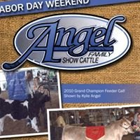 Angel Family Show Cattle