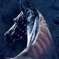 America's Equine Sanctuary at Blue Shadow Farm