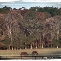 Break N Run Farms
