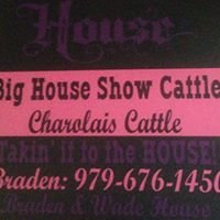 Big House Show Cattle