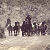 Prunty Ranch