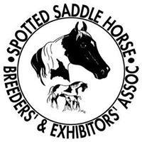 SSHBEA Spotted Saddle Horse Breeders & Exhibitors Association