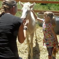 Sunshine Sanctuary For Kids and Horses